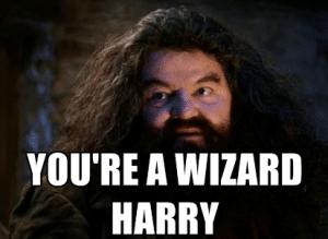 harry potter table quiz